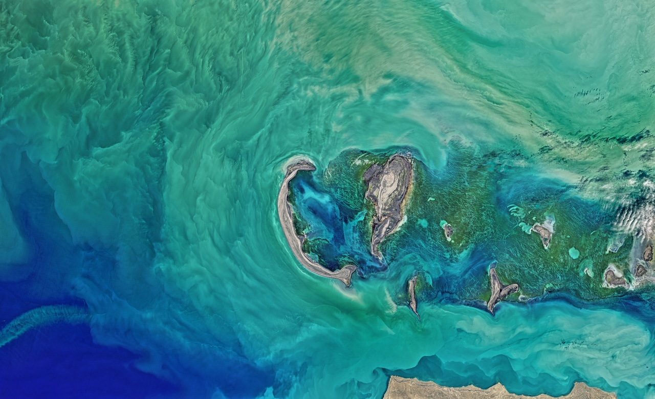 Leaf Space earth observation on satsearch